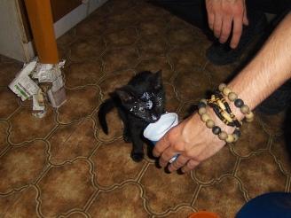 itt meg amikor kinyalatta vele a peti a tejföltöt.